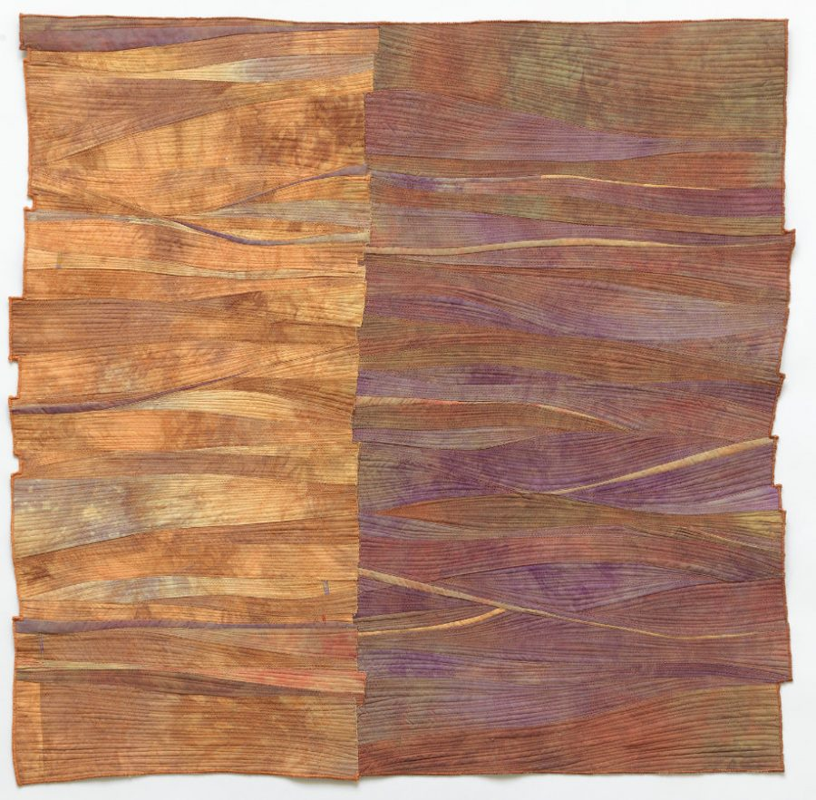 contemporary quilt by Beth Carney
